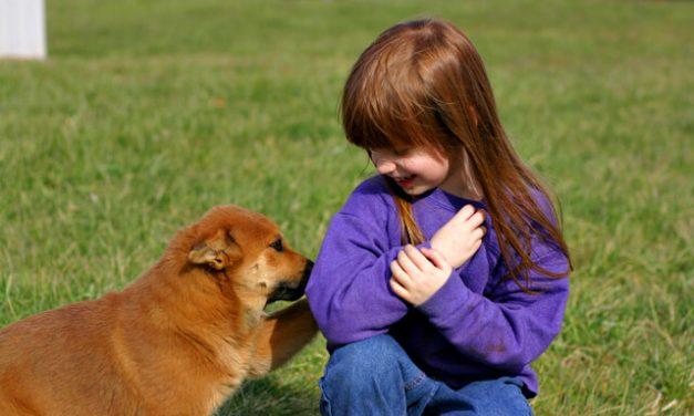 Hunde og børn – Lær dem at omgås hinanden