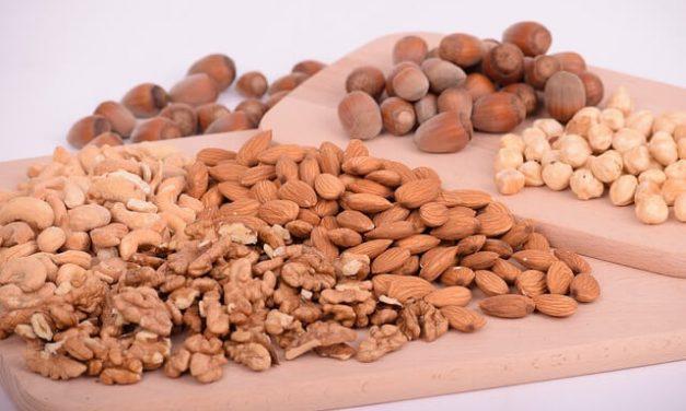 Må hunde spise nødder?