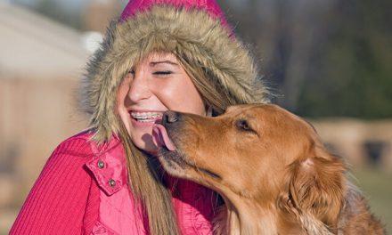 Hvorfor slikker hunde på mennesker?