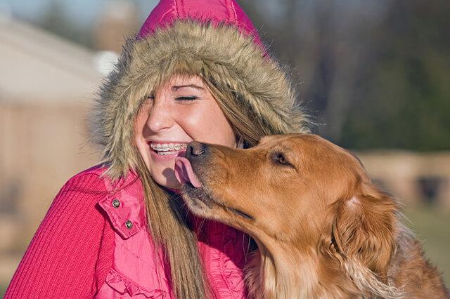 Hund der slikker på et menneske