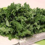 Må hunde spise grønkål?