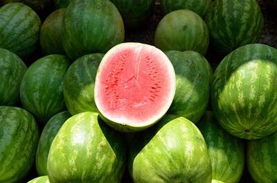 Vandmeloner