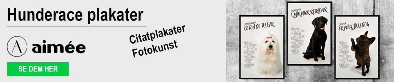 aimee.dk website